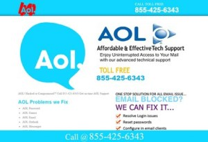A screen shot of a non-AOL web site that uses the company's logo. Courtesy aol-tech.us